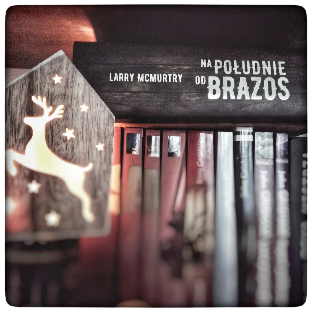 Na południe od Brazos - Larry McMurtry - czytoholik