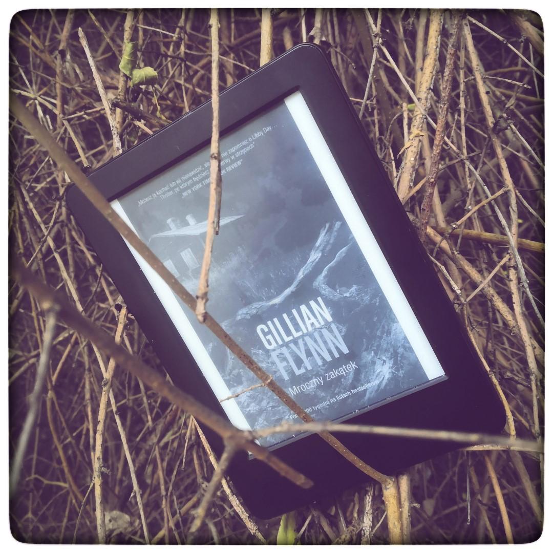 Mroczny zakątek - Gillian Flynn - czytoholik